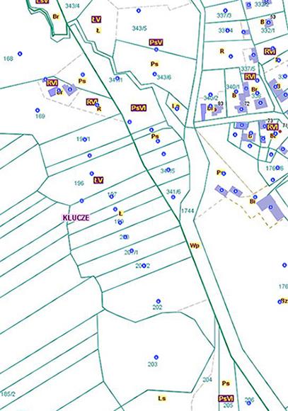 Przebieg granicy pomiędzy obszarami wsi Cieślin i Bydlin (CB/1).