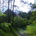 Cieślin - Budynek wśród lasu w Bagnach