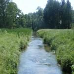 Cieślin - Rzeka Tarnówka płynąca w kierunku Pustek