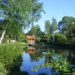 Cieślin - Staw w środku wsi