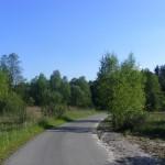 Cieślin - Ulica Stawowa kierująca-się w stronę Golczowic