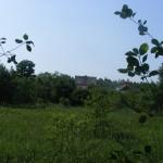 Cieślin - Widok na zabudowania przy ulicy Jurajskiej od strony Bydlina