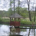 Sadzawka wodna w ogrodzie przy plebanii