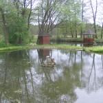 Sadzawki wodne w ogrodzie przy plebanii
