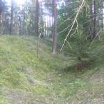 Cieślin - Okopa z czasów II wojny światowej w lesie za cmentarzem