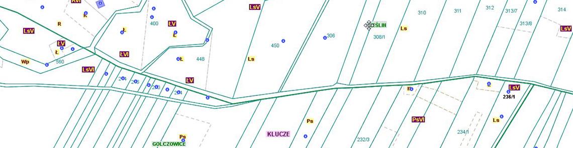 Przebieg granicy pomiędzy obszarami wsi Cieślin i Golczowice (CG/1)