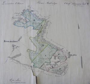 Mapa przeglądowa skonfiskowanego obrębu leśnego Kwaśniów (1860)