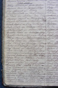 Akt urodzenia Franciszka Gostkowskiego w 1799 r.
