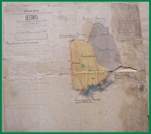 Plan ziemi przechodzącej na własność chłopów - Cieślin (1881)